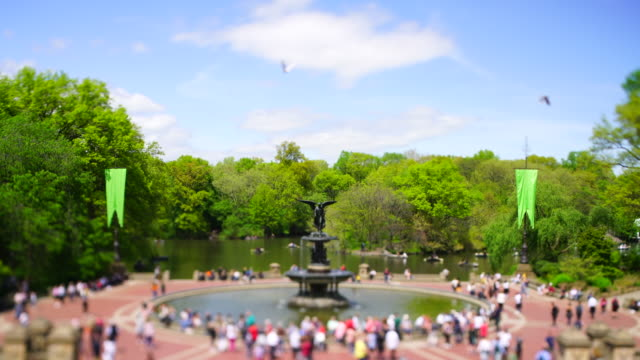 vídeos de stock e filmes b-roll de springtime soft afternoon sunlight illuminates the fresh green trees behind the bethesda fountain in central park at new york city ny usa on may 06 2019. - fonte bethesda