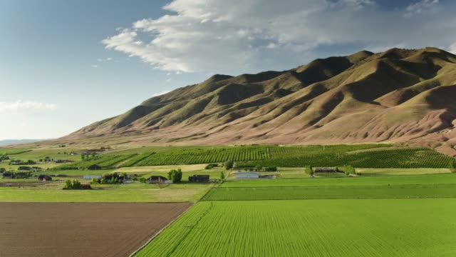 Sprinkers on Farmland in Utah - Drone Shot