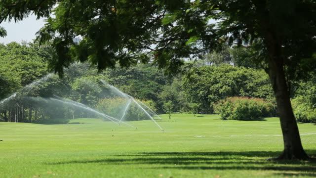 庭のスプリンクラー - ゴルフ場点の映像素材/bロール
