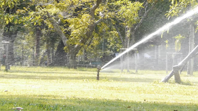 sprinkleranlage im park - sprinkler stock-videos und b-roll-filmmaterial