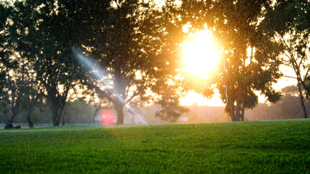 sprinkler in watering green lawn of golf courses in the morning - sprinkler stock videos & royalty-free footage