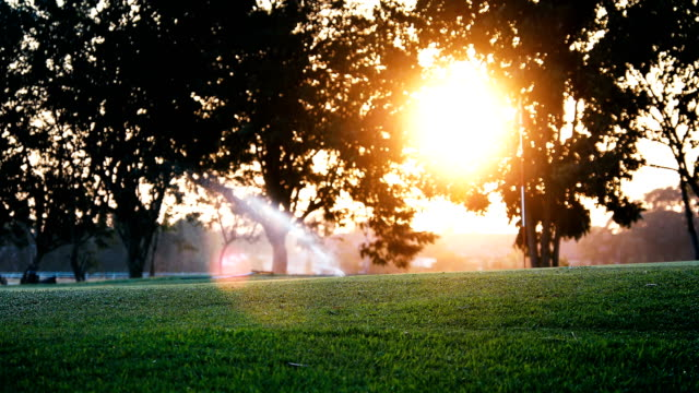 sprinkler in watering green lawn of golf courses in the morning - green golf course stock videos and b-roll footage