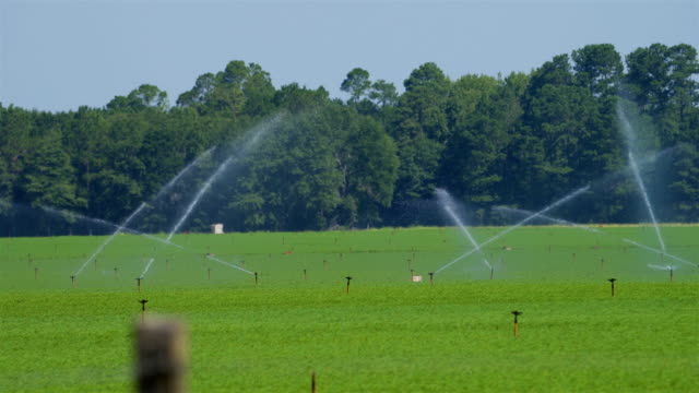 sprinkler irrigation system - irrigation equipment stock videos & royalty-free footage