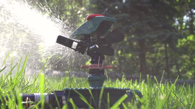 vídeos de stock, filmes e b-roll de cu slo mo sprinkler spraying water in grass / farmington, connecticut, united states - aspersor