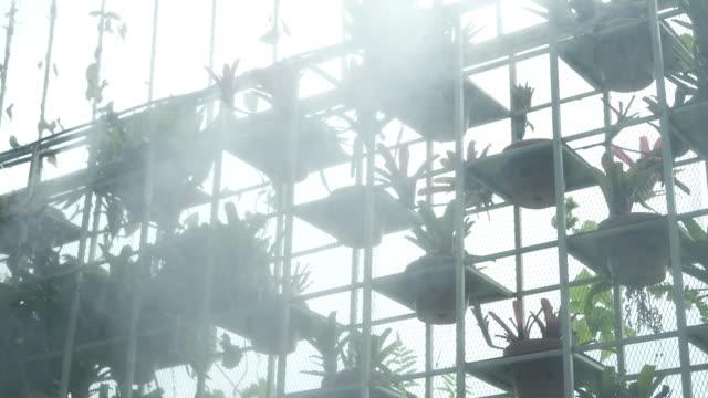 vídeos de stock, filmes e b-roll de sistema de extinção de incêndios que pulveriza a água no jardim vertical - planta de vaso