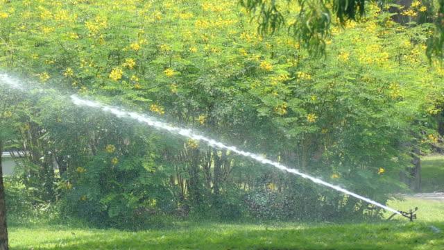 sprinkler spraying water - turf stock videos & royalty-free footage