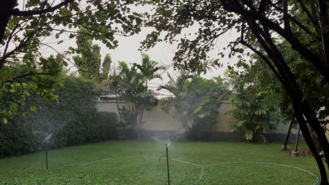 stockvideo's en b-roll-footage met sprinkler sproeien van water - gazon