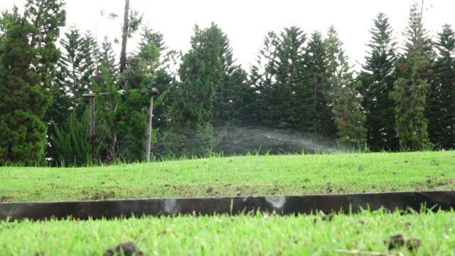 sprinkler sprühen wasser - sprinkler stock-videos und b-roll-filmmaterial