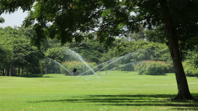 sprinkler - sprinkler stock videos and b-roll footage