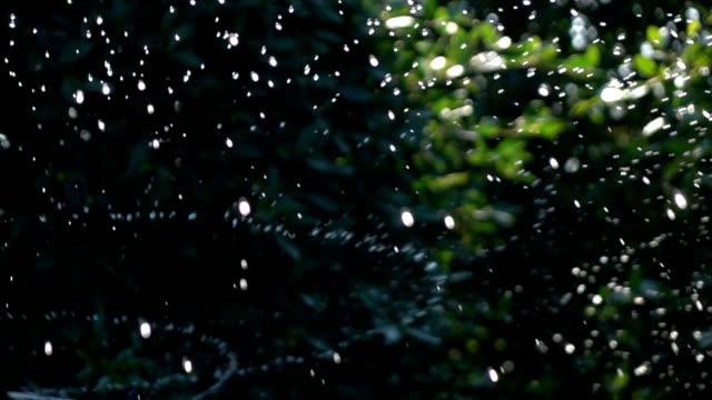 sprinkler water, slow motion shot - sprinkler stock videos and b-roll footage