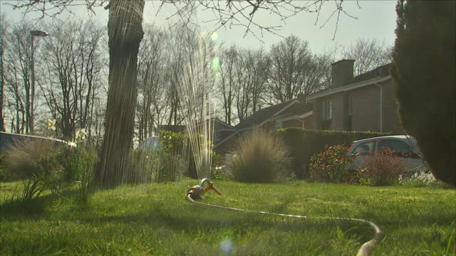 stockvideo's en b-roll-footage met sprinkler watering a lawn - water geven