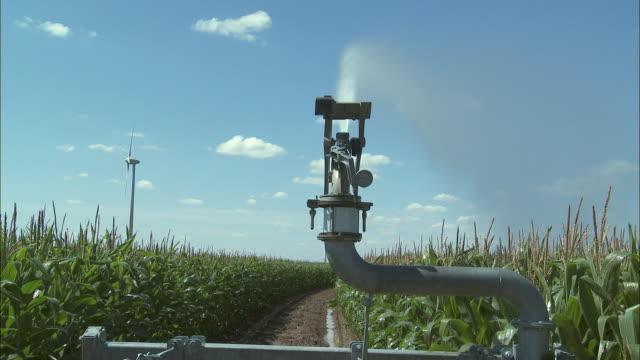 cu sprinkler watering corn field, perwez, namur, belgium - spraying stock videos & royalty-free footage