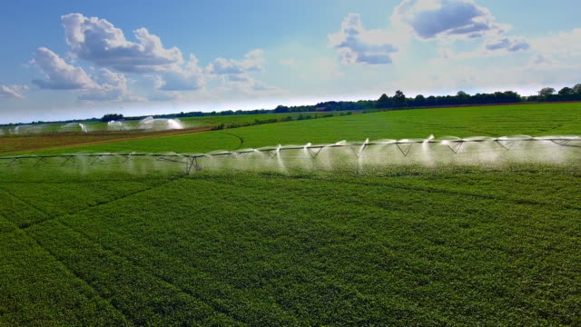 sprinkler watering field - sprinkler system stock videos & royalty-free footage