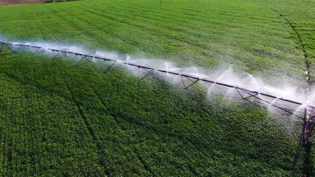 sprinkler watering field - irrigation equipment stock videos & royalty-free footage