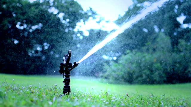 sprinkler watering lawn - lawn stock videos & royalty-free footage