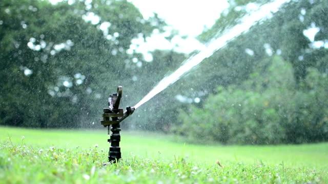 sprinkler watering lawn - sprinkler stock videos and b-roll footage