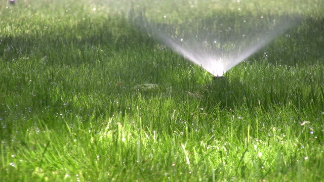 Sprinklers. Agricultural Sprinkler spraying water on back yard green grass.