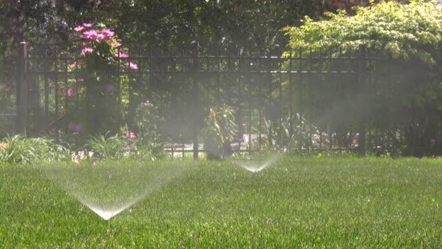 sprinklers. agricultural sprinkler spraying water on back yard green grass. - vattenspridare bildbanksvideor och videomaterial från bakom kulisserna
