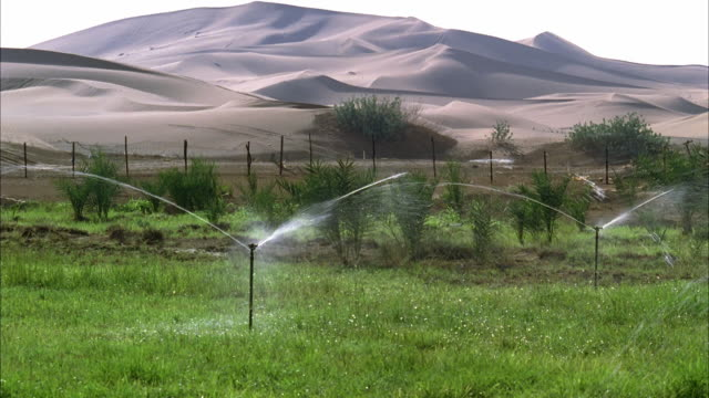 ws tu sprinklers irrigating plot of farmland in desert with sand dunes in background  - irrigation equipment stock videos & royalty-free footage