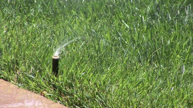 ktla sprinklers turn on and off at a los angeles home - sprinkler stock-videos und b-roll-filmmaterial