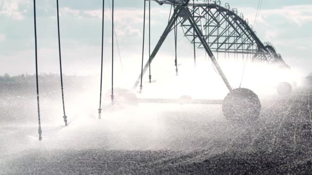 Sprinklers watering crops on a farm