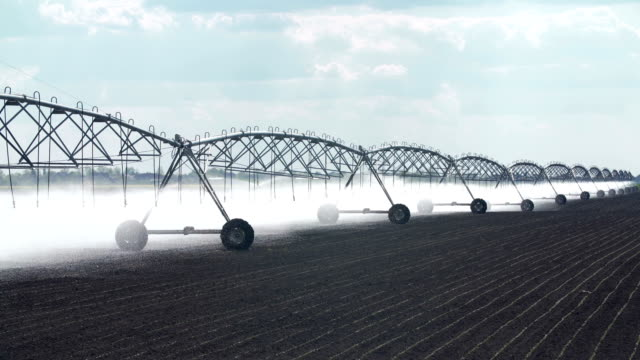 sprinklers watering crops on a farm - irrigation equipment stock videos and b-roll footage