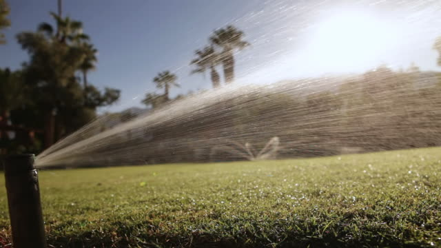 CU Sprinklers watering lawns in early morning / Los Angeles, California, United States