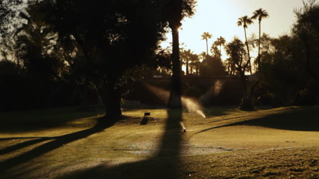 vídeos de stock, filmes e b-roll de ms sprinklers watering lawns in early morning / los angeles, california, united states - aspersor