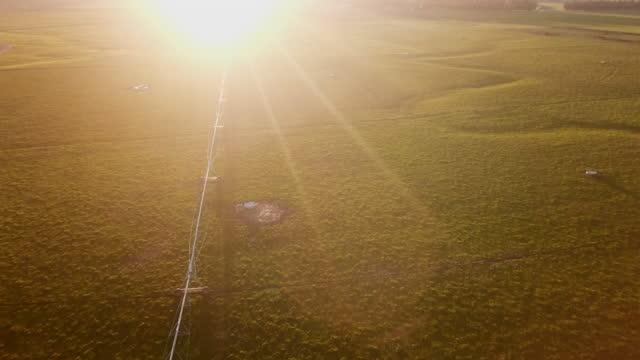 sprinklers watering on a farm  aerial view at sunset - real time stock videos & royalty-free footage