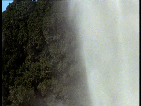 spurting geyser spraying into air, rotorua, north island, new zealand - rotorua stock videos and b-roll footage