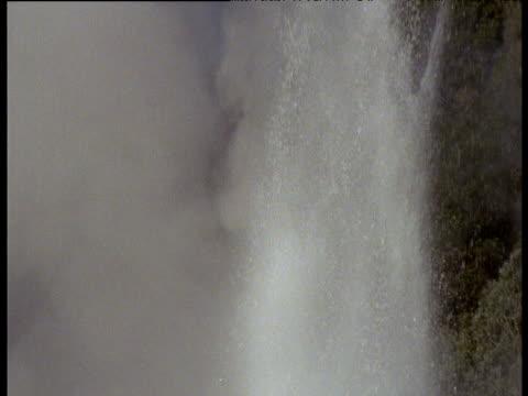 spurting geyser spraying into air, rotorua, north island, new zealand - geysir stock-videos und b-roll-filmmaterial