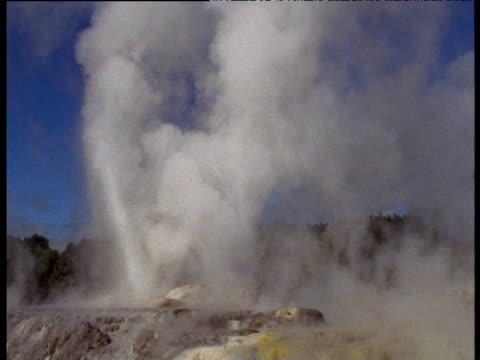 spurting geyser spraying water into air, rotorua, north island, new zealand - geysir stock-videos und b-roll-filmmaterial