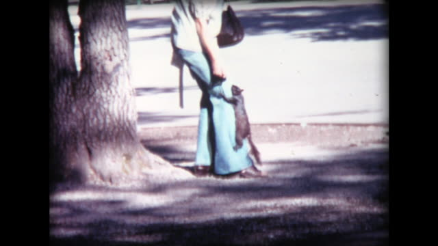 1974 squirrel climbs up woman's pant leg - bib overalls stock videos and b-roll footage