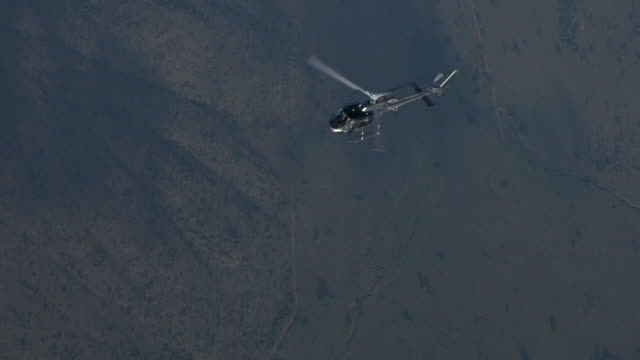 b2 squirrel helicopter flying over african plains - military helicopter stock videos and b-roll footage
