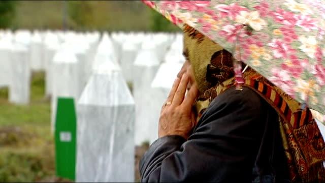 srebrenica hatidza mehmedovic looking at graves reporter and mehmedovic along mehmedovic speaking - srebrenica stock videos and b-roll footage