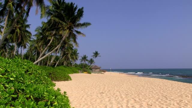 stockvideo's en b-roll-footage met sri lanka beach - sri lanka