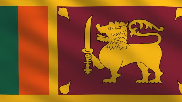 sri lanka flag - sri lankan flag stock videos & royalty-free footage