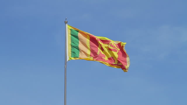 ms sri lanka national flag / colombo, western province, sri lanka - flag stock videos & royalty-free footage