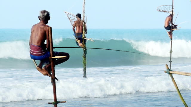 slow motion: sri lanka weligama stick fishermen - sri lanka stock videos and b-roll footage