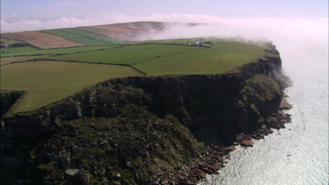 st bees head - england stock-videos und b-roll-filmmaterial