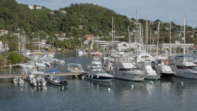 st george's harbour docks / grenada, carribbean - st. george's grenada stock videos and b-roll footage