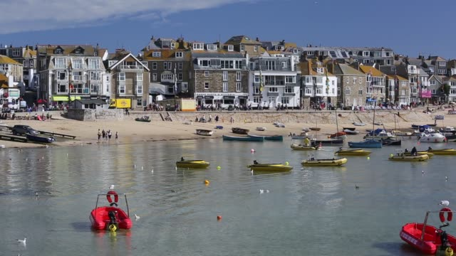st ives harbour at high tide cornwall uk - water bird stock videos & royalty-free footage