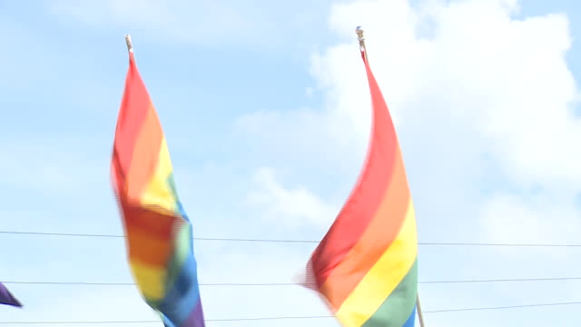 ktvi st louis mo us rainbow pride flags on rehab bar and grill exterior on wednesday june 5 2019 - ホモフォビア点の映像素材/bロール