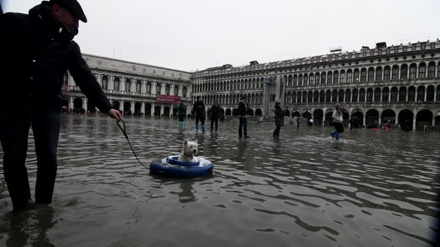 st. mark's square is covered in water during an exceptional high tide on november 13, 2019 in venice, italy. venice second highest tide after 1966... - venice italy stock videos & royalty-free footage