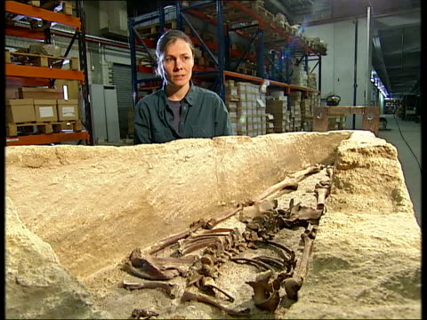 st martin-in-the-fields excavation of church vaults leads to exciting archaeological discovery; august 2006 archaeologists standing next excavated... - excitement stock videos & royalty-free footage