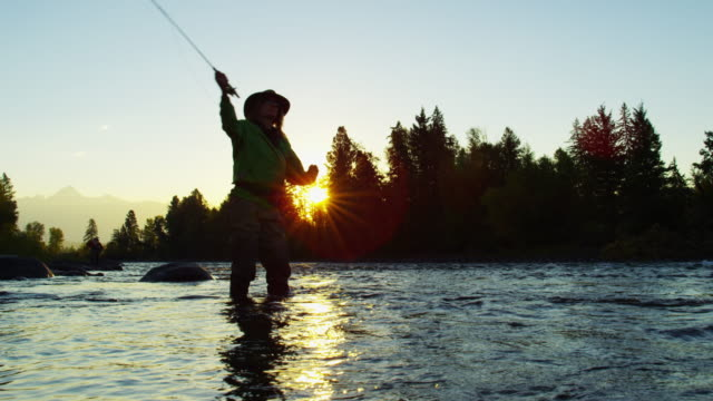 st mary river female freshwater fly fishing canada - fishing reel stock videos and b-roll footage