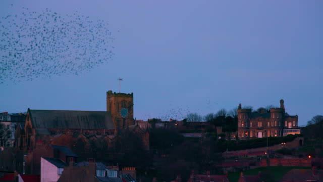 St Mary's Church  Castle House & Starlings Murmuration, Scarborough, North Yorkshire, England