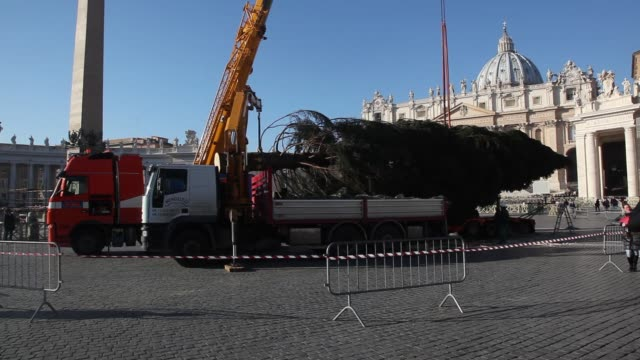 clean st peter's square christmas tree erected on december 05 2013 in vatican city vatican this year's tree which is 25 metres high was donated from... - petersplatz stock-videos und b-roll-filmmaterial