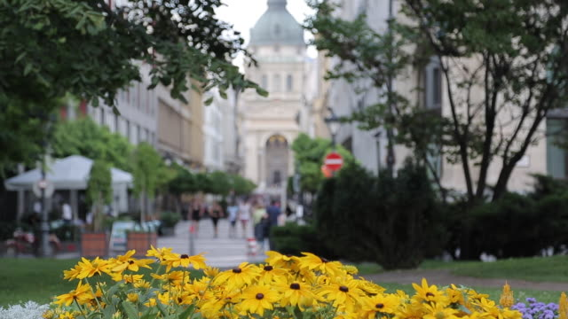 st. stephen's basilica, budapest, hungary, europe - traditionally hungarian stock videos & royalty-free footage