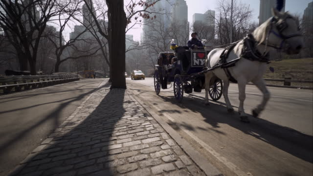 Stabilized shot walking past horse and carriage along street edge in Central Park
